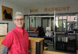 DOG HARMONY